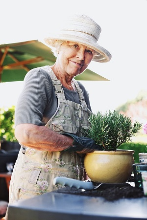 TStress Soars when You Age, So Fight Back through Gardening