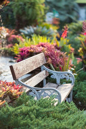 Allowing Gardening to Calm Your Senses