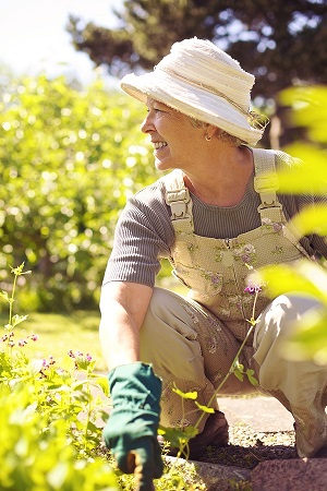 The Physical Reward to Using Gardening as a Stress Reliever