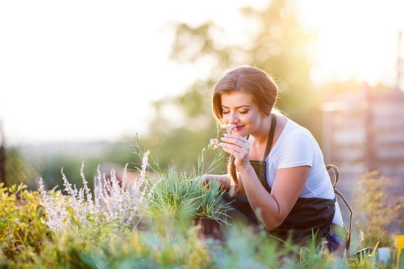 Soak Up Nature's Stress Diminishing Vitamins when Gardening Outdoors