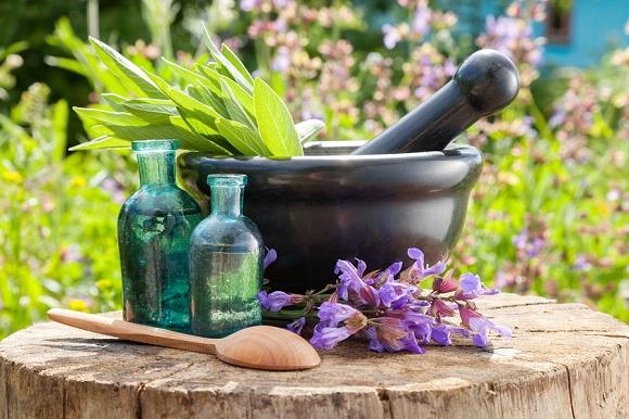Unusual Medicinal Herbs and Plants