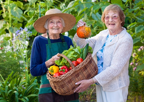 Therapeutic Gardens for the Elderly