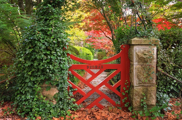 Inspire Yourself and Others with a Healing Garden Landscape